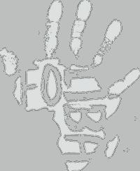 Foliba